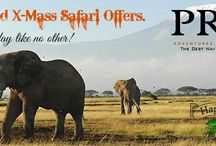 3 days 2 nights  maasai mara / transport, accommodation, meals, excursions and driver guide....at 14,500ksh, 250USD per person
