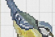 birds (păsări)