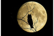 Moon. Good Old Friend.
