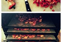 dehydrate vegies and ftuit