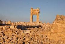 Palmyra wyzwolona