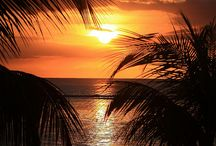 Paesaggi tropicali