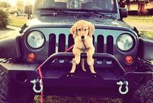 jeeplove