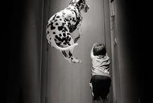 Dzieci i inne zwierzęta