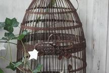 ♥ Bird cage ♥