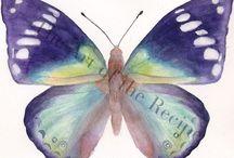 Butterflies / Original Watercolors