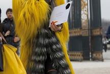 Promenade au Jardin Des Tuileries / Photograpy