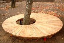 Datenbank Baum