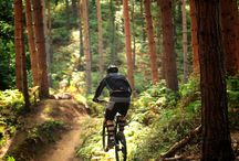 Mountain Biking / Mountain biking is the sport of riding bicycles off-road, often over rough terrain, using specially designed mountain bikes. Mountain bikes share similarities with other bikes, but incorporate features designed to enhance durability and performance in rough terrain.