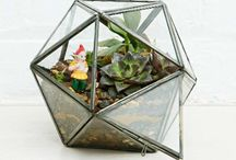 Terrariums / We've rounded up some of the most beautiful and shapely terrariums around so you can incorporate plant life into your humble abodes.