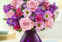 Flowers / Mooie bloemen voor elke gelegenheid.