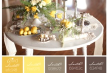 color palettes / by Julia M