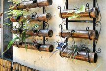 Gardening in Style / by Donatello Kwiatkowski