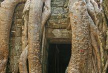Cambodja / Foto's gemaakt in Cambodja.