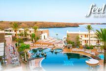 Hotel Mirador Papagayo / Hotel4 estrellas situado en Playa Blanca - Lanzarote.