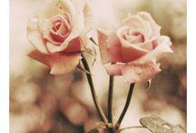 Lovey little things