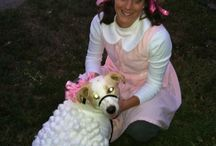 Celebrate Halloween With Your Pets / Halloween+pets=cuteness!