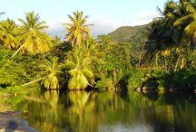 """Dominica / Wer kennt Dominica? Die zu Unrecht unbekannte wunderschöne Insel der Karibik? Schon Johnny Depp drehte hier Teile zum 2. Teil des """"Fluchs des Karibik"""". Ob Ruhesuchende oder aktive Menschen, hier findet jeder sein Paradies. Mehr dazu: http://www.vivamundo-reisen.de/Suedamerika/Dominica/"""