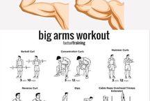 Bisceps