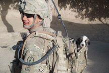 [Military] Vests, backpacks