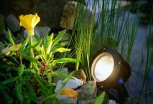 Garden & Pond Lighting