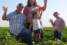 Our farms and farmers / Meet the lovable people and places that grow California sweetpotatoes