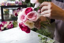 Floristics training