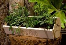 wise/green/gardening