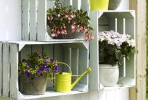 ogród skrzynki
