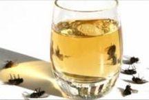 Para eliminar moscas y cucarachas mosquito y mas