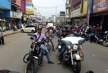 Harley Davidson / 2008 xl 1200