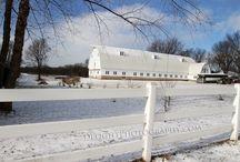 Barn Weddings / Farm Weddings  Historic John P Furber Farm Cottage Grove, MN