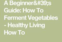 fermentar vegetais