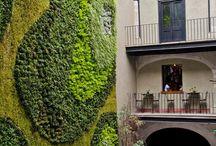 Vertical gardens / Vertical garden creations / by Samantha Fowles Rae