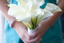 Wedding / by Jillian Phillips