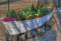 Flowers/Landscape / Beautiful flowers, landscape ideas, outdoor furniture and more. / by Tammy Brazille