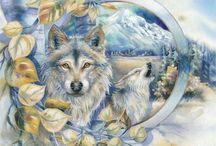 wolven en indianen