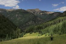 High Country Summer / Summer in the Rocky Mountains of Colorado. / by From The High Country