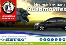 neumaticos-enero