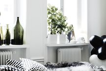 Living / Interior