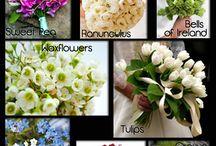 Flowers and center pieces / GARDINIAS ECT