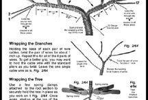Stromy z drátků