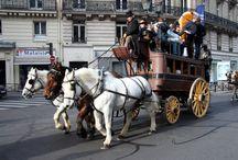 Défilé du Salon du Cheval de Paris / Défilé du Salon du Cheval de Paris 2014