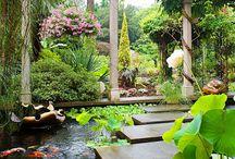 LD_ВОДНЫЕ ОБЪЕКТЫ / Вдохновляющие идеи фонтанов, водопадов, ручьев и других водных объектов используемые в Ландшафтном Дизайне