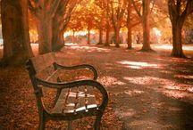 Jesień w sercu mym...