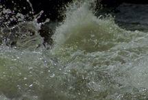 eau photo