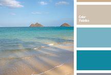 color scheme x