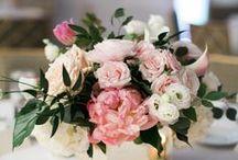 fiori ary