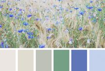 Nieuwe huis: kleuren