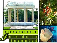 Isla de la Juventud Cuba / All about Isla de la Juventud Cuba – Links to important websites focused and dedicated on Isla de la Juventud, Things to do in Isla de la Juventud, Best Hotels in Isla de la Juventud and Private restaurants in Isla de la Juventud Cuba / by Cuba Travel